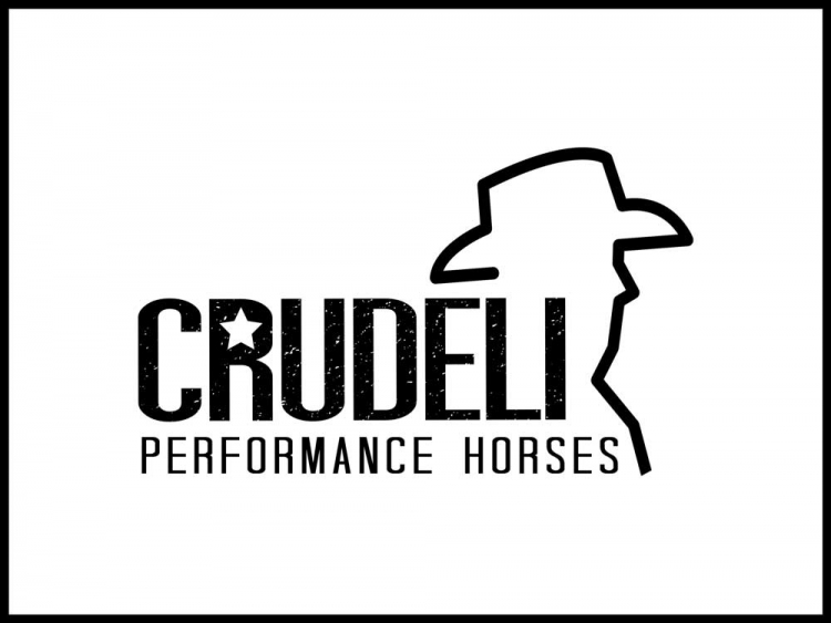 Crudeli performance horses
